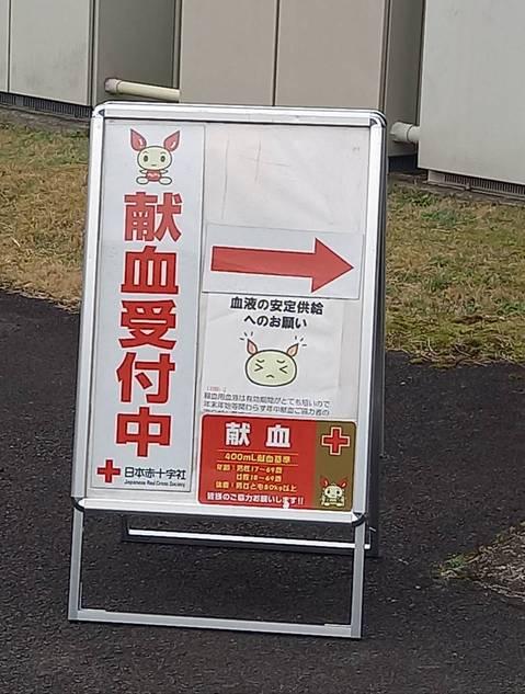 献血 (2).jpg
